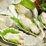 天草産岩牡蠣